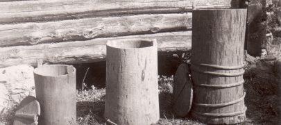 Mets kui puidu andja: Vanasti tundis eestlane puitu paremini