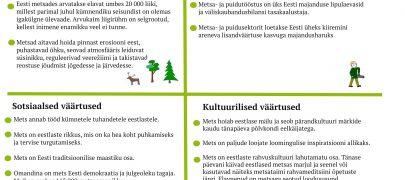 Mis on metsa väärtused?