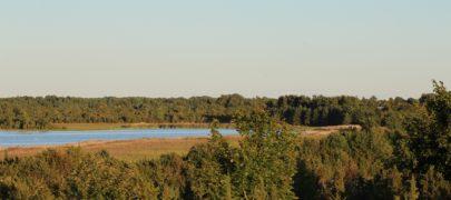 Erametsaliit: Eestis kaitstakse loodust metsaomanike arvelt