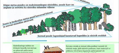Mets aitab inimesel hingata