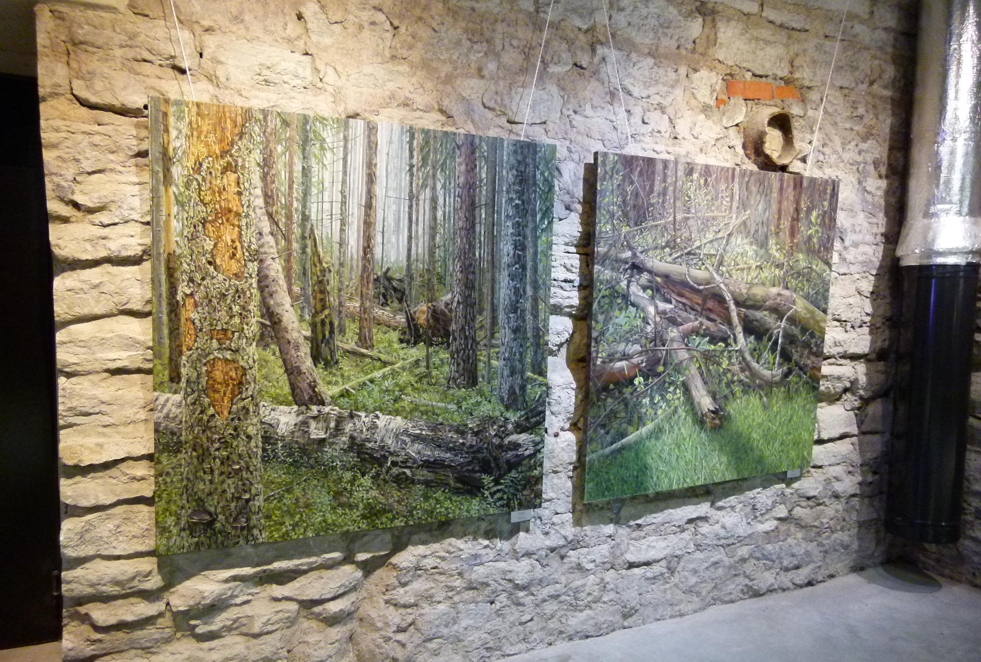 Mets räägib nii kunstniku kui vaatajaga