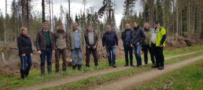 Eesti Erametsaliidu uueks juhatuse esimeheks valiti Ando Eelmaa