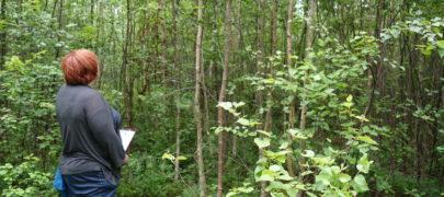 Aira Toss metsandusest ja heaoluühiskonnast