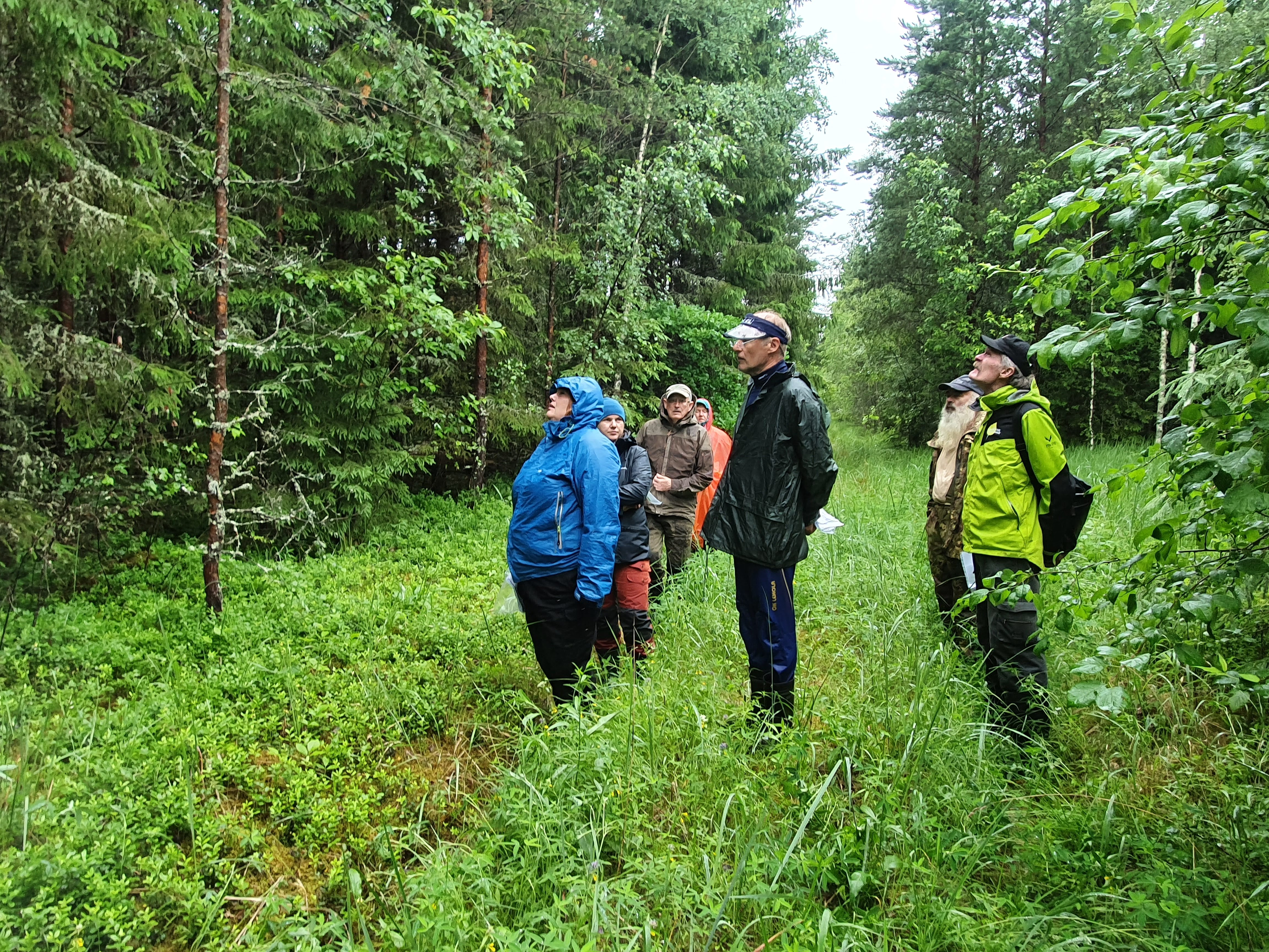 Parimaks metsamajandajaks kandideerib rekordarv metsaomanikke