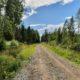 Justiitsministeerium jättis metsaomanike põhiõigusi riivava seaduseelnõu kooskõlastuseta