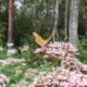 Ando Eelmaa: kas liblikad vajavad pelleteid?