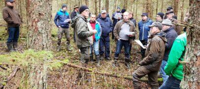 Maaeluministri teenetemärk metsaülem Anti Rallmannile